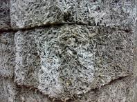 структура арболита