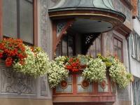 Пример цветочной композиции для открытого балкона