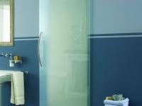 Дверь из стекла в санузел