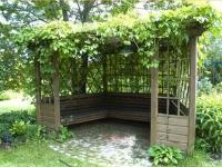 Озеленение деревянной дачной беседки